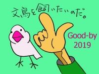 Wish_20191231212501